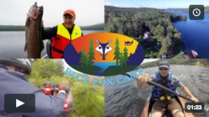 Family trip to Blue Fox Camp - video